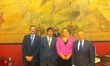 PantallasAmigas acude al Senado para abordar la seguridad de la infancia en Internet (España)