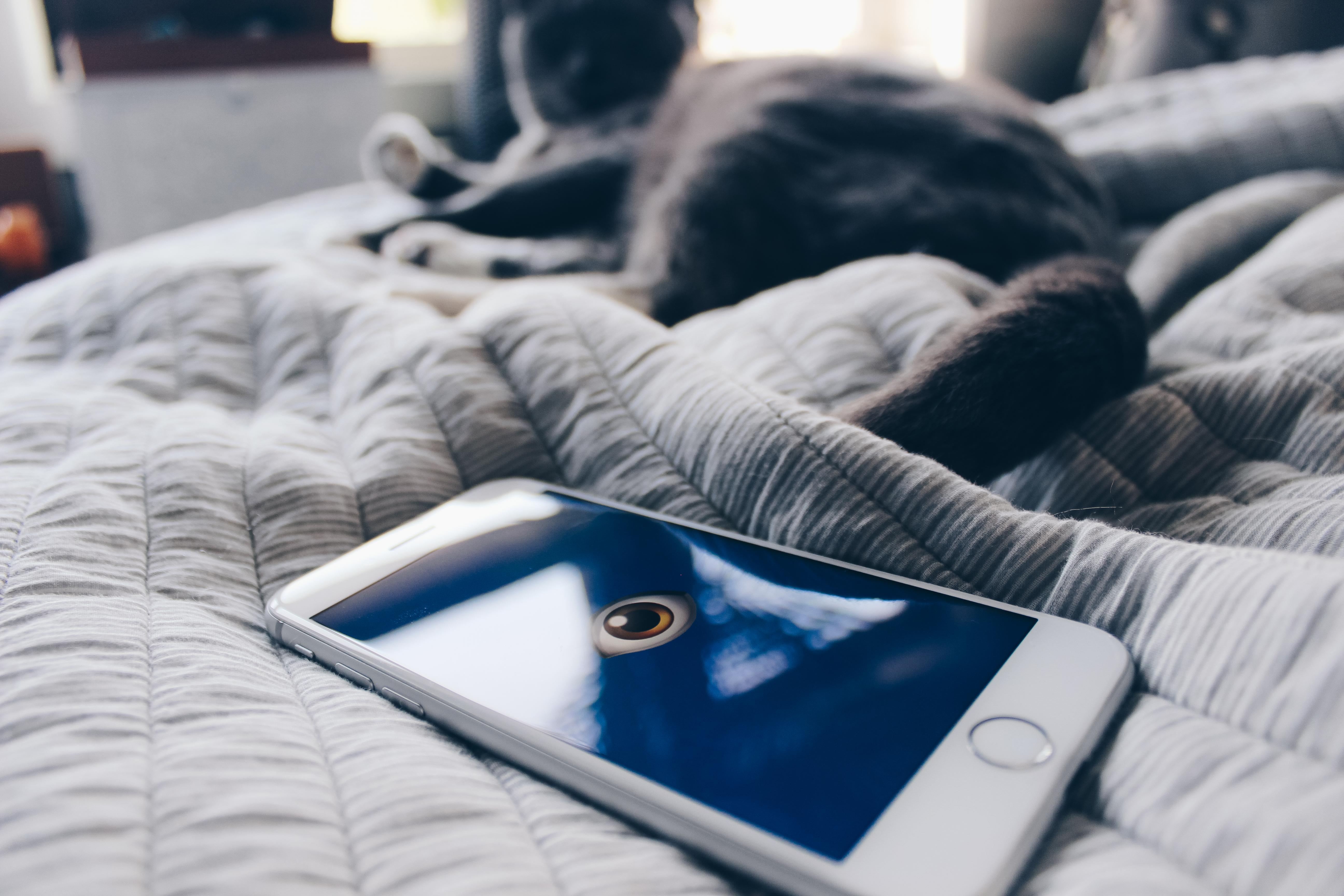 Aplicacion Juegos Porno Movil las apps te espían y venden tus datos, protégete con estos